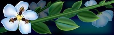 Blog bees on flower stem