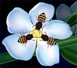 bees   blog logo
